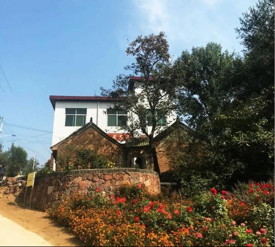 河南省登封市:走进绿涛花海中的村庄