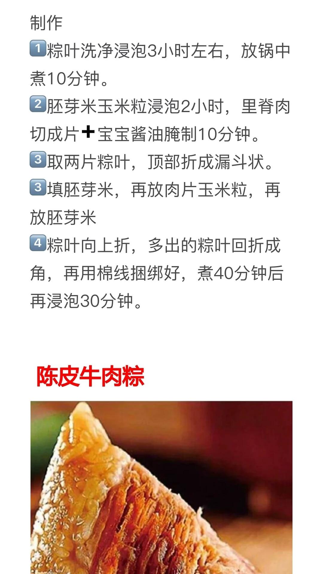 16种粽子的做法及配料!粽子馅配方种类大全,粽子制作方法教程 美食做法 第6张