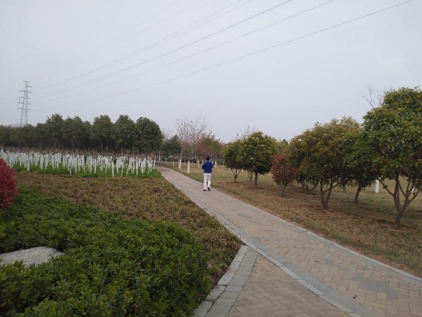 郑州郊区公园,依湖而建,河流直穿公园,适合野钓,野炊,免门票