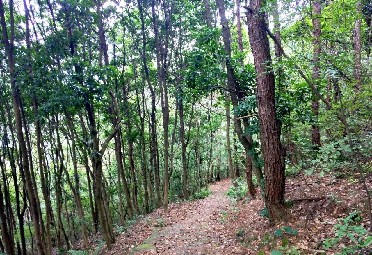 五一宁波去哪玩?一条鲜为人知的徒步游风景线,属于徒步者的天堂