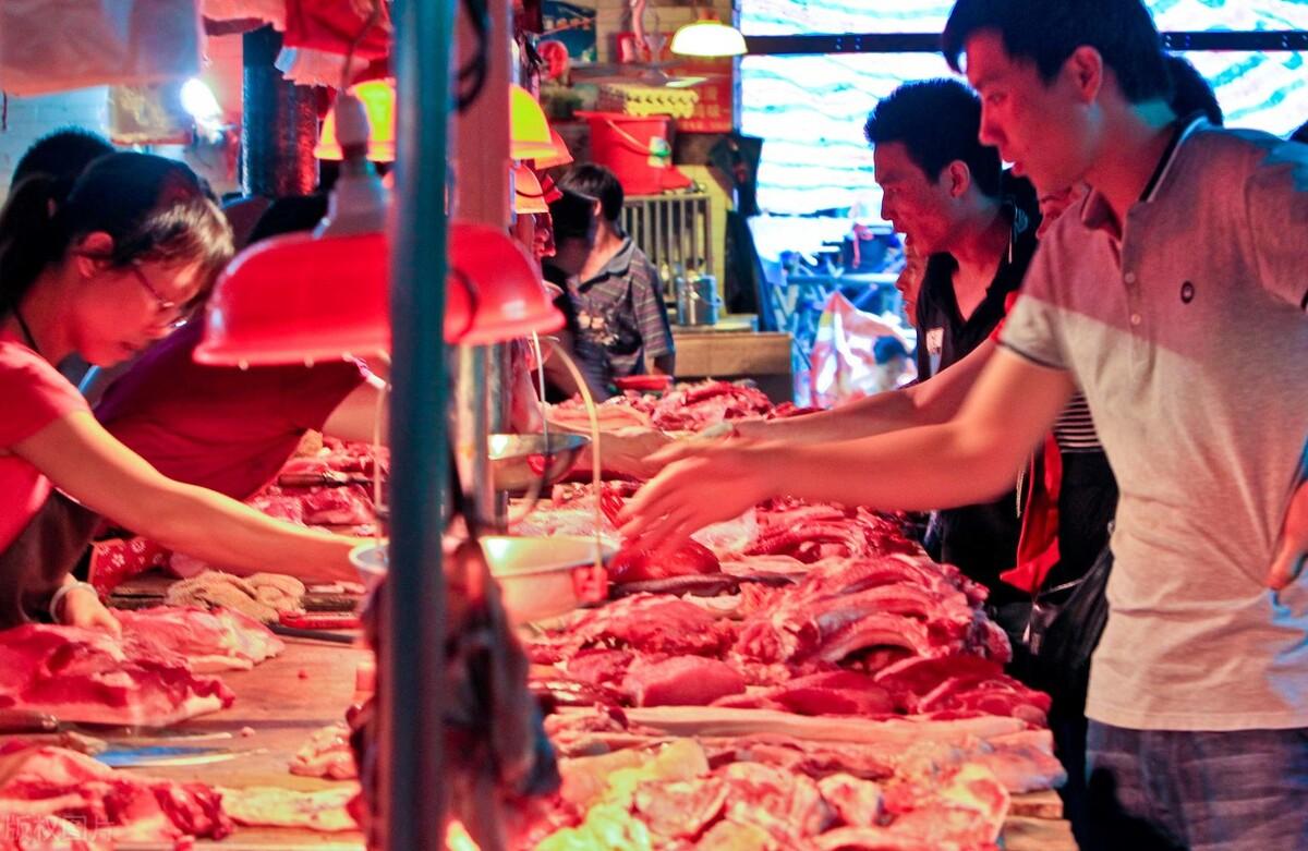 """今日豬價是多少(豬肉價格""""跳水""""大跌,豬仔只要300元)"""