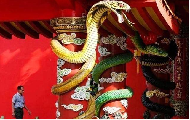 """世上唯一的""""蛇庙"""",寺内青蛇泛滥,游客:我们一点都不害怕"""