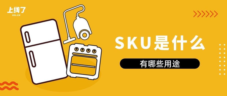 sku什么意思(sku通俗点的意思)