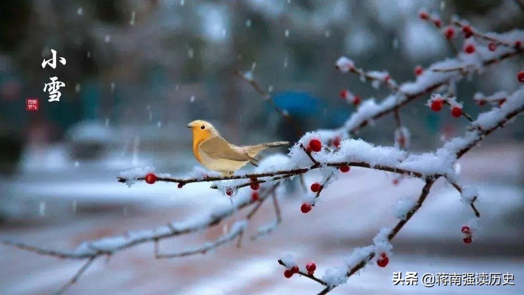 小雪,一片飞来一片寒,哥们,留下来喝一杯不?