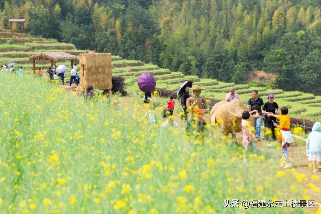 阳春三月 · 永定初溪土楼赴一场春之约