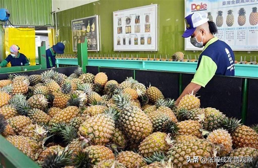 早知今日何必当初?台湾官员请大陆手下留情 不要拒绝问题水果