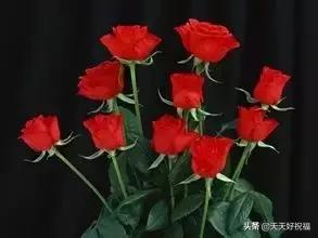 520将至,一曲《幸福恋人》送给我的朋友圈,太美了,快打开看看!