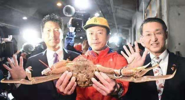 就在今天,一只螃蟹卖出32万人民币!打破世界纪录
