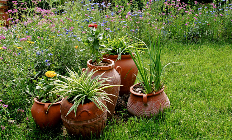 """用這些""""物件""""當容器養花,打造漂亮花園,看上去更有韻味"""