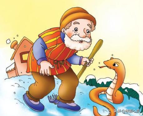 你害怕蛇吗,其实养宠物蛇还有许多好处呢,不吵不闹乖着呢