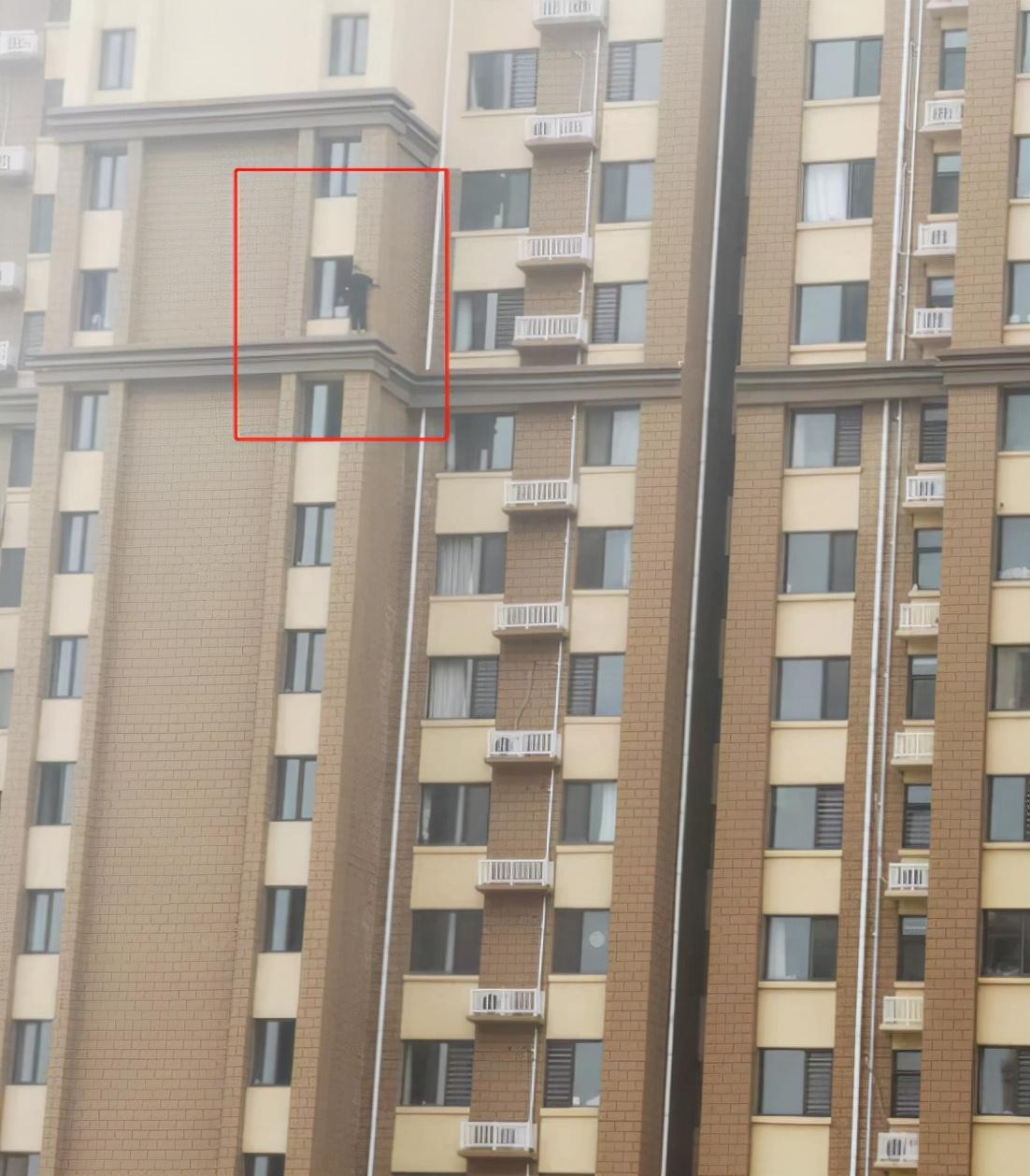 男子将孩子从29楼扔下还捅伤妻子!物业:孩子身亡、妻子送医抢救,疑因夫妻吵架引发
