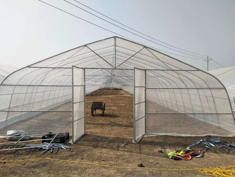 温室百科之农业温室大棚倒塌的几点原因