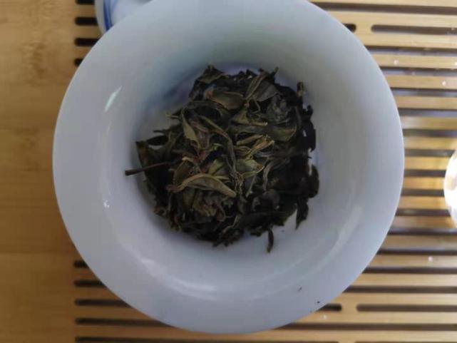 """小茶控品鉴包の古树猫耳朵:非主流普洱茶 小叶种""""猫耳朵""""尝试"""