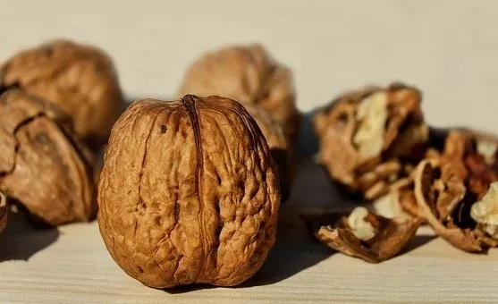 6大常见食物,滋补养身效果好,尤其适合冬天吃!关键还不贵 食材宝典 第5张