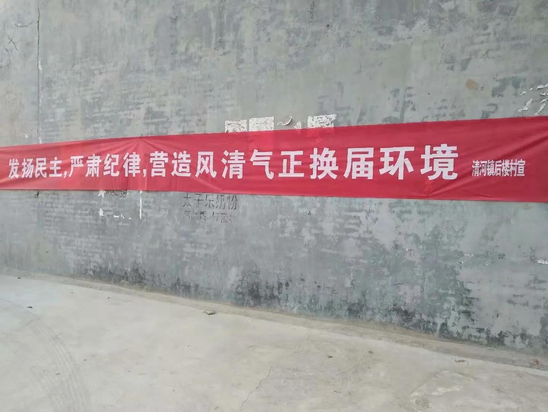 """方城县清河镇多举措扎实推进村""""两委""""换届工作"""
