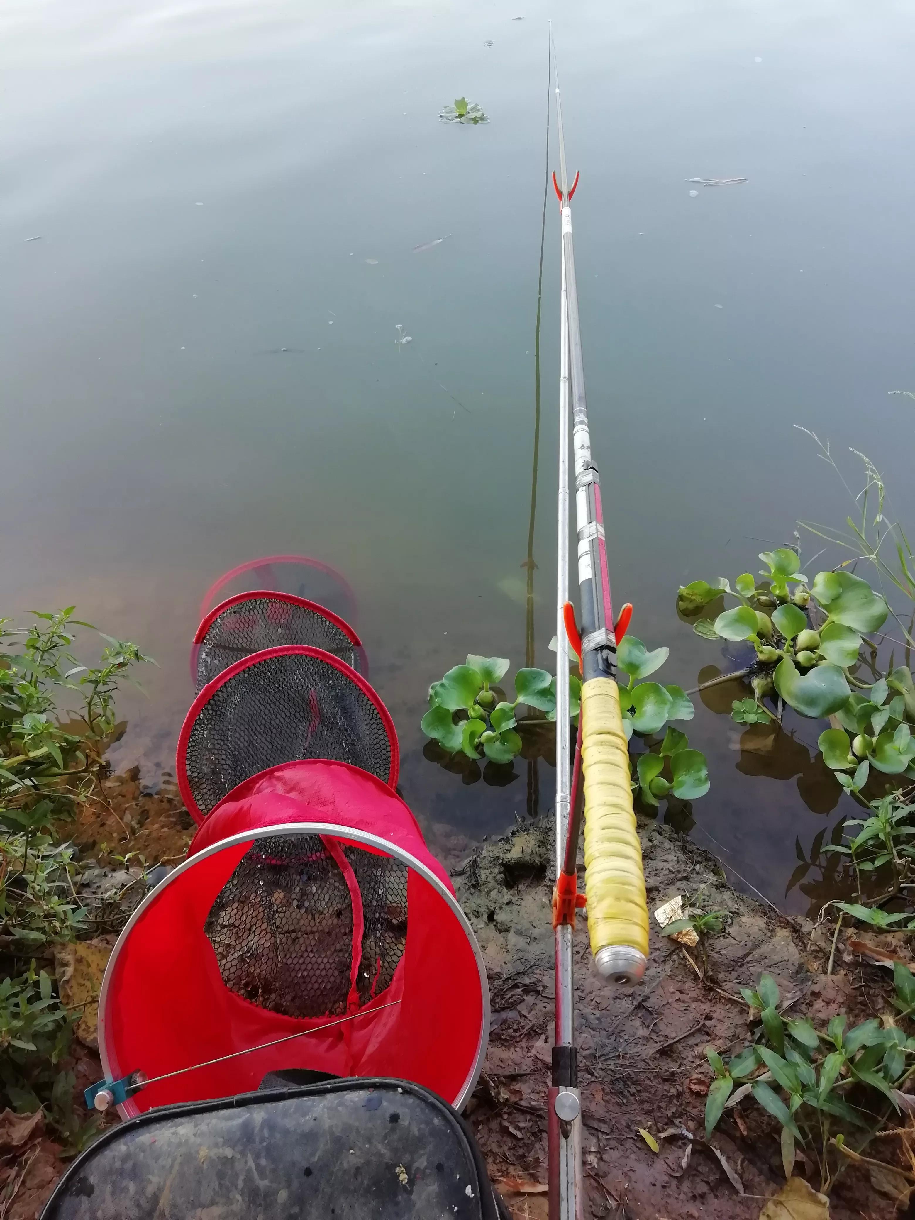 我的这些钓鱼经验,能帮助你鱼获提高