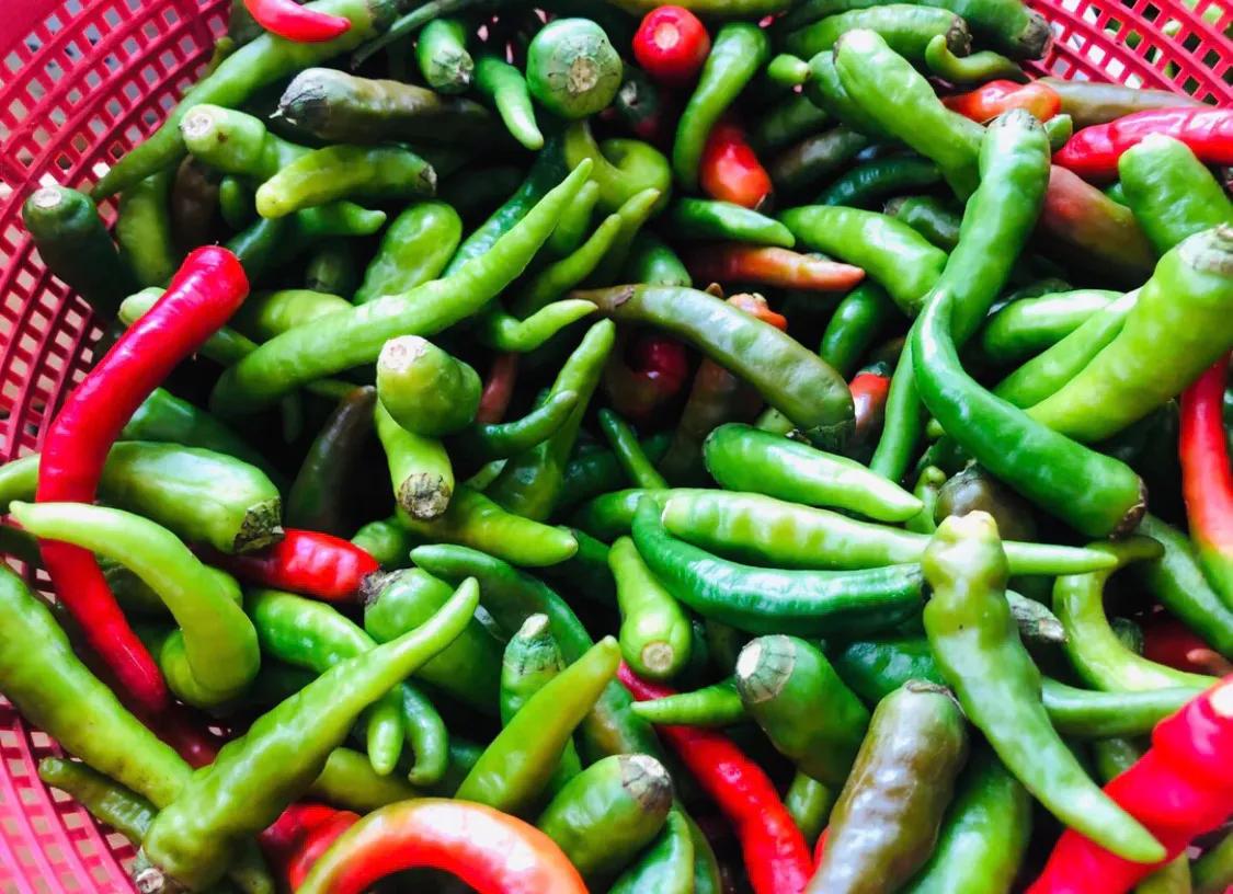 超简单的腌辣椒,解决您的无辣不欢,超辣版 美食做法 第1张