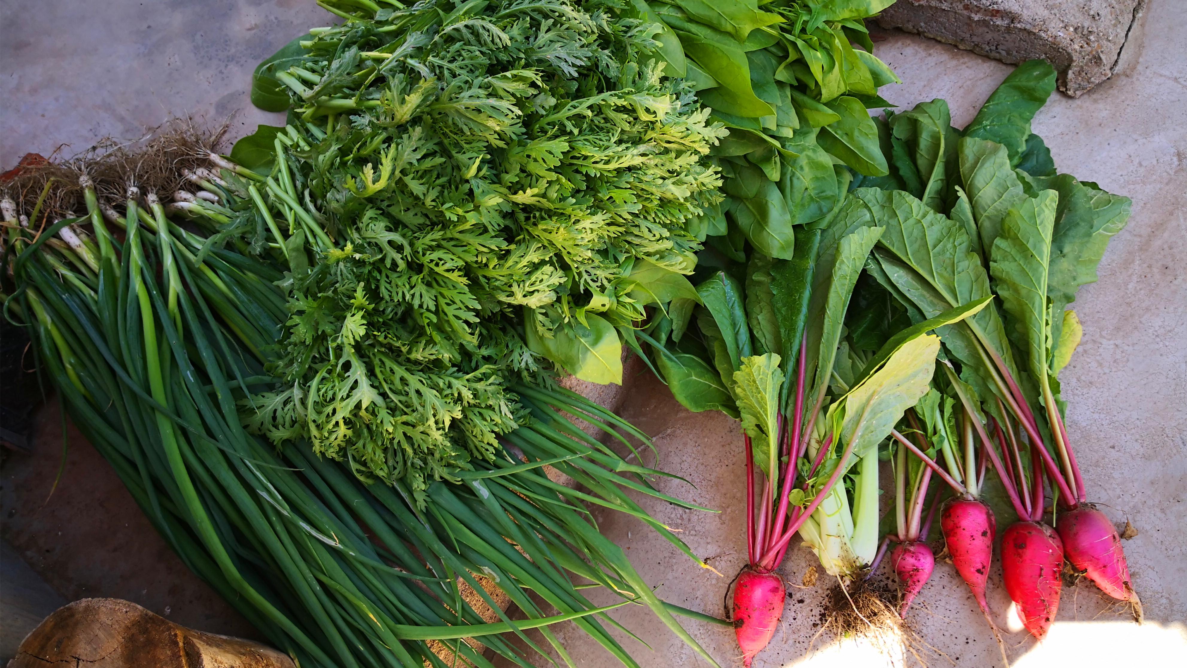 入夏后,少吃黄瓜多吃它,补充水分易消化,加糖醋汁一拌,特香 美食做法 第3张