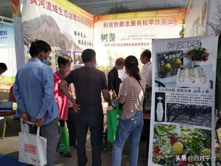 """运城骄傲:运城农业科技发明""""树葆""""亮相青岛国际会展中心"""