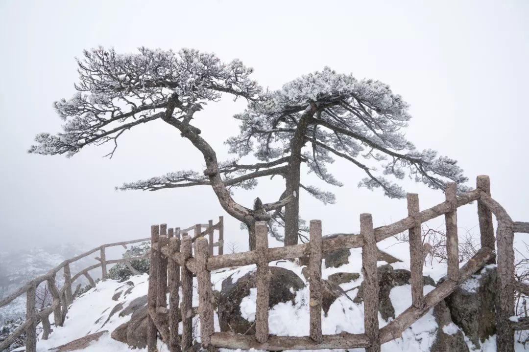 冬天怎么过?12月旅行地推荐!看雪、避寒、度假,都帮你想到了