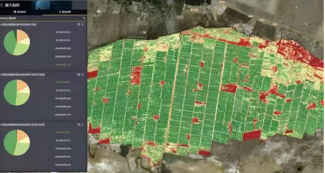 北斗导航、自动驾驶、无人机……高科技助阵的新疆棉花有多牛?