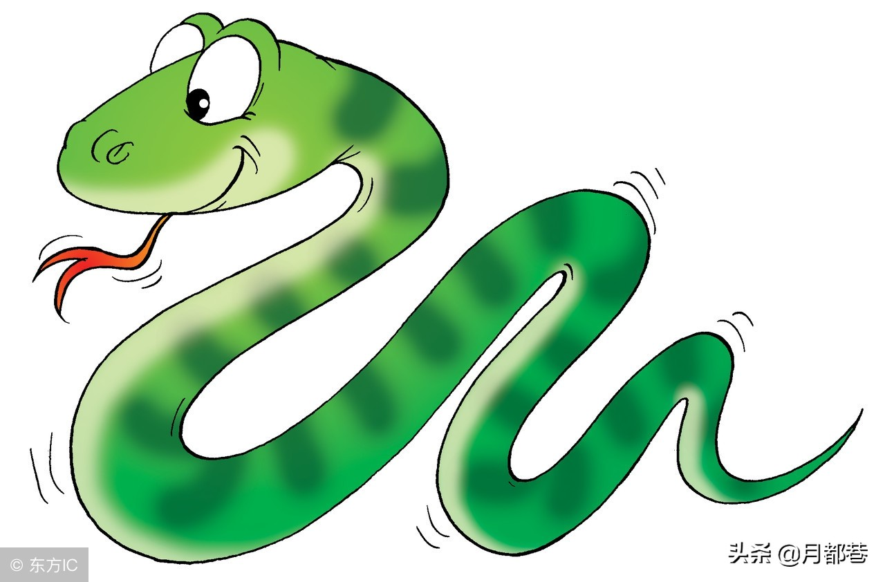 女性梦到蛇预示着什么