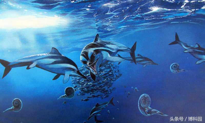 古生物学家是否命名了太多物种?