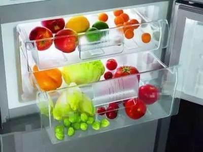 为什么很多人外出要在冰箱里放一枚硬币?今天总算知道其中猫腻了