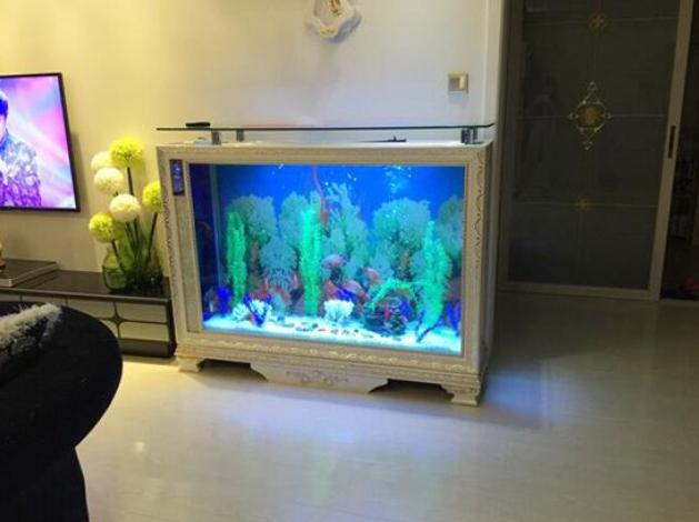 家中魚缸擺放的 5 大禁忌,但是放在這里想不發財都難