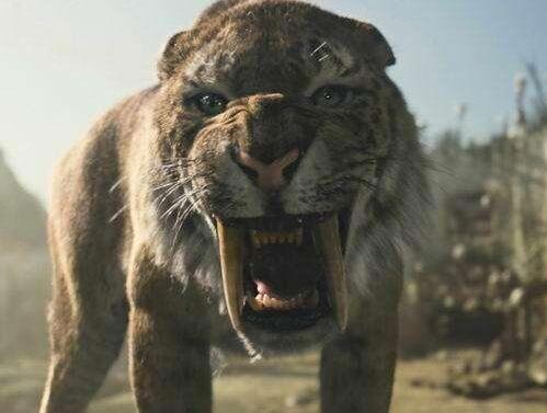 关于剑齿虎的资料和化石图片01