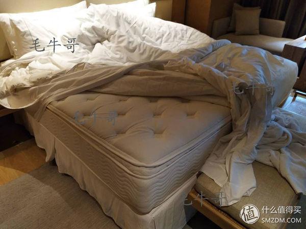 详细说明七三星酒店餐饮店:详细说明七三星酒店餐饮店级別,床垫子,科学研究搬入功略