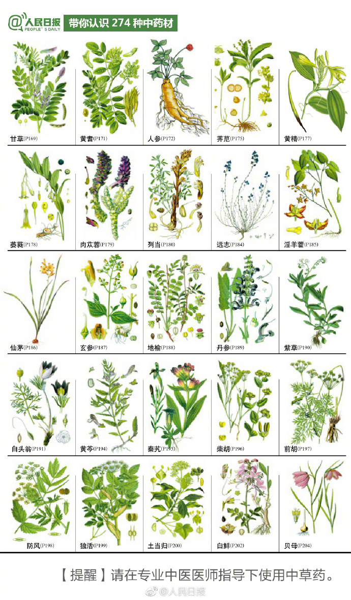 274种中草药材,你认识几个?