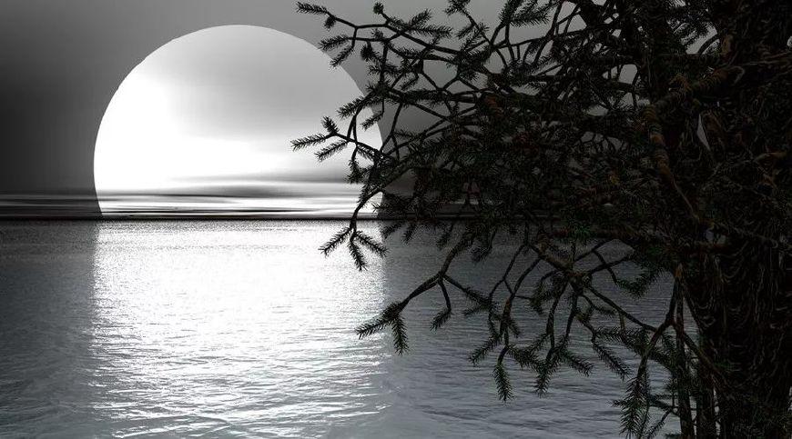 关于月的思乡诗词名句(十首著名赏月诗词)