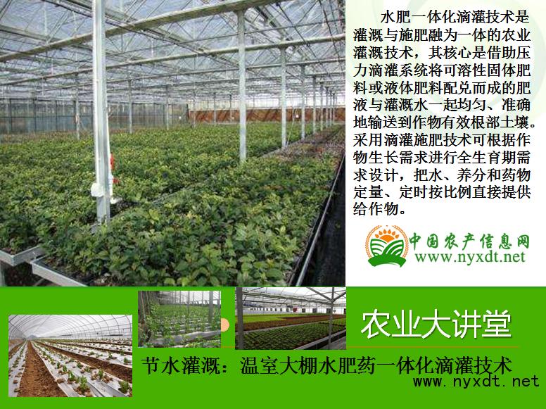 节水灌溉:温室大棚水肥药一体化滴灌技术