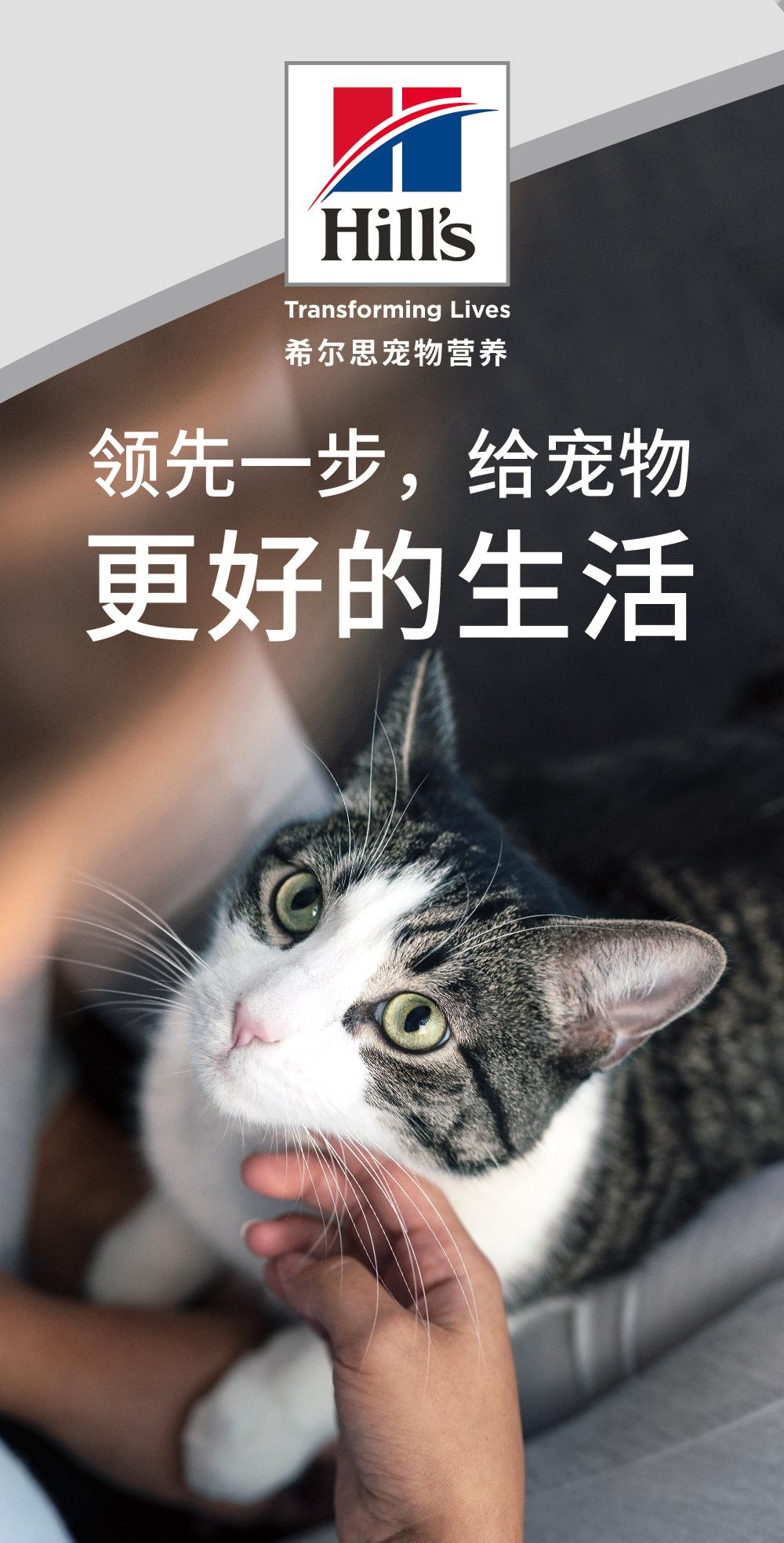 高端进口宠物品牌希尔思亮相2020上海亚宠展,好玩活动等你来