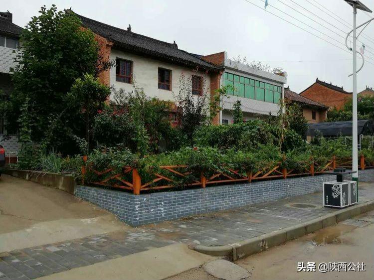 周至村落:中国西部苗木第一村裕盛村