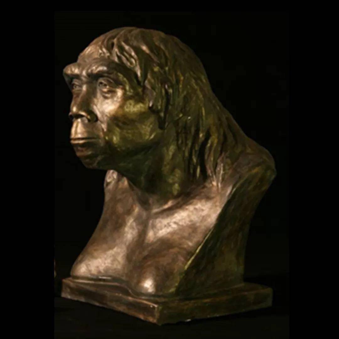 北京猿人和智人交配过吗?我们体内有北京猿人的基因吗?