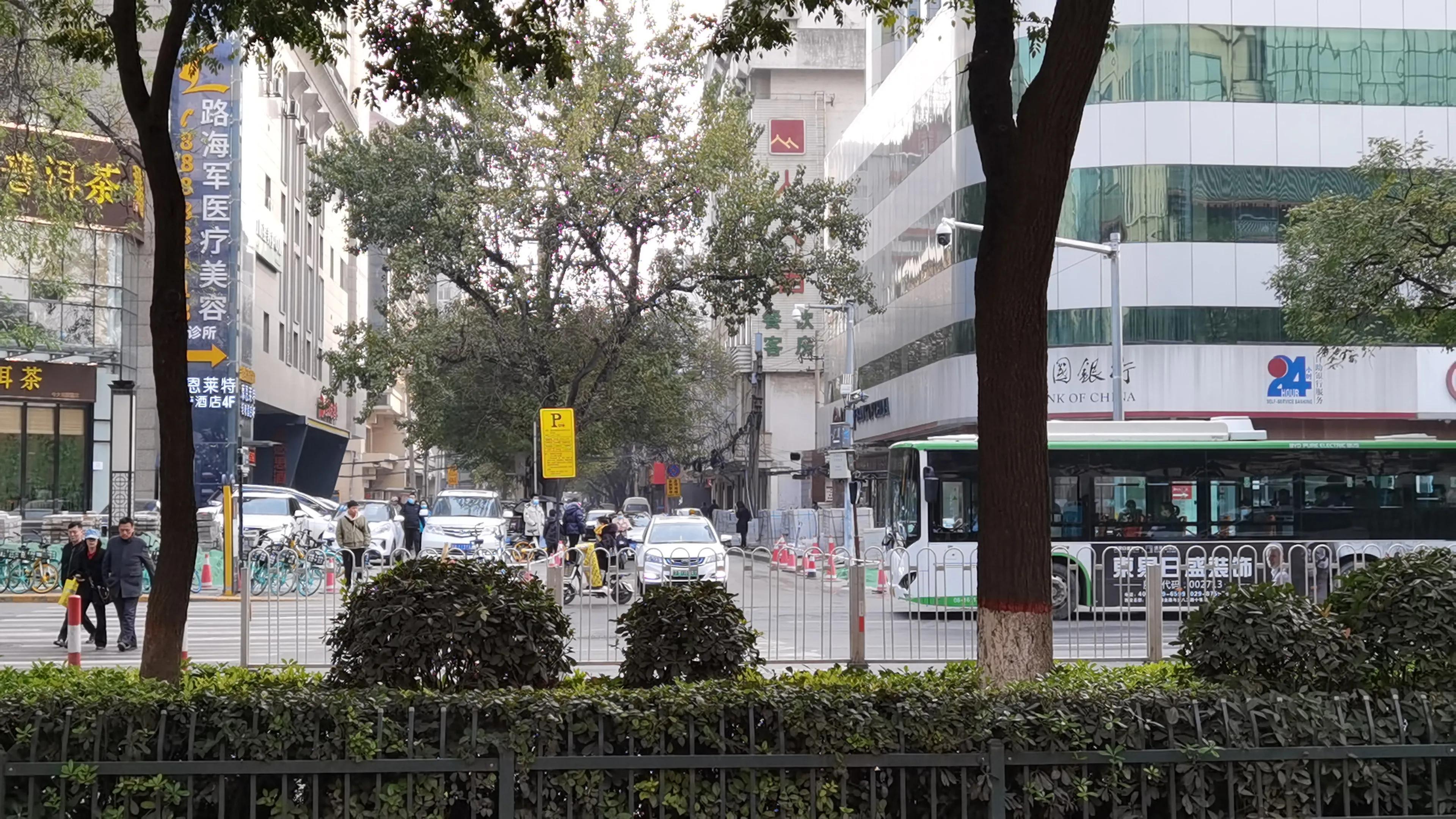 西安城里的菊花园,你了解吗?
