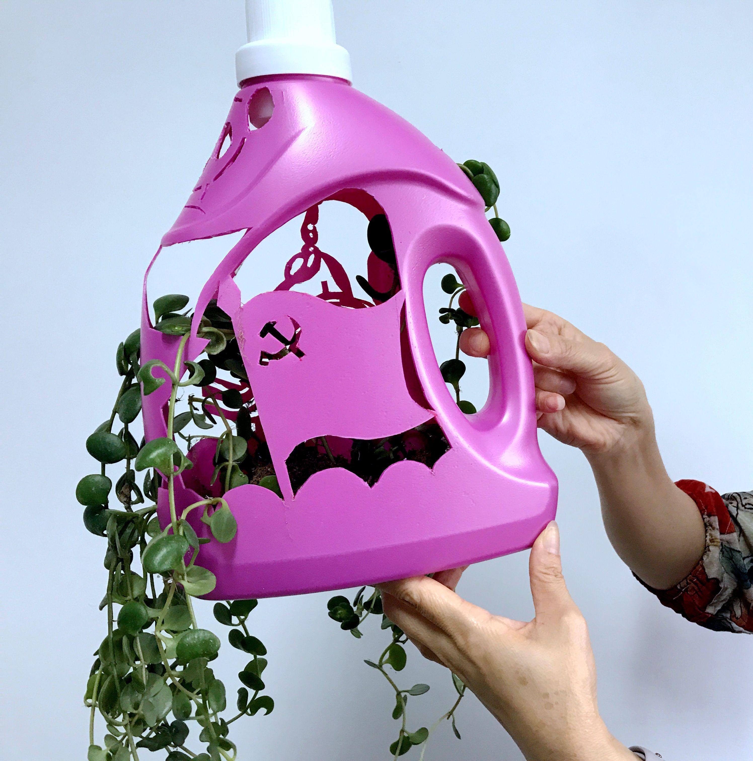 空洗衣液瓶子不要扔,只需几步就能变成漂亮的花盆 家务妙招 第2张