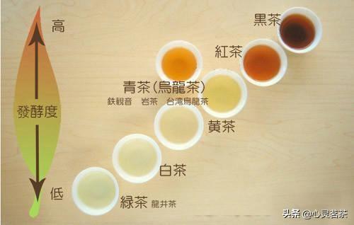 茶知识|合理饮茶-成年人每天饮茶5-15克,茶虽好切忌贪杯