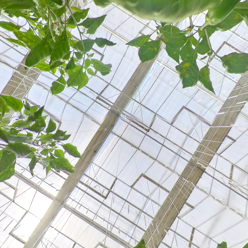 什么是喷塑大棚骨架?智能玻璃温室大棚骨架喷塑有何优缺点?