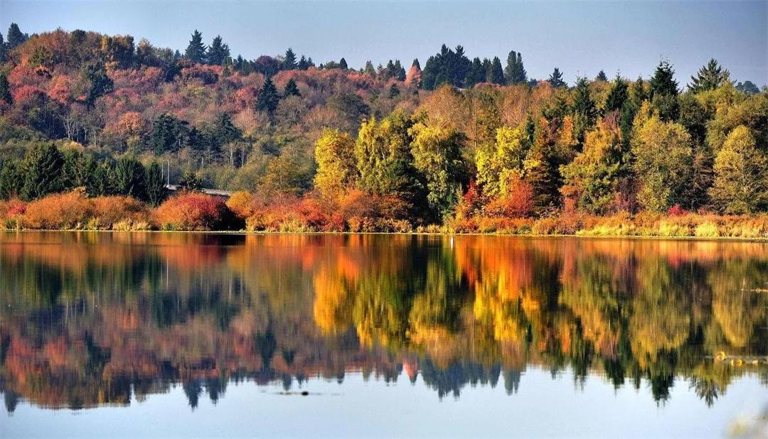 美爆!安康秋天最值得一去这8个地方颜值超高,辛苦整理拿走不谢