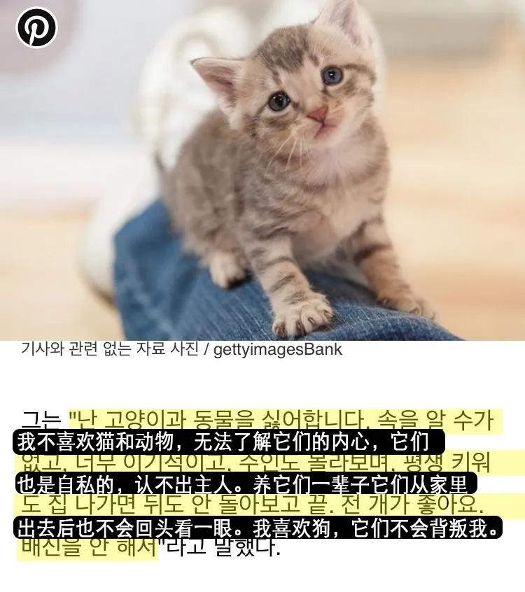 因扬言自己不喜欢猫,韩国男星被网友辱骂,他个人喜好被绑架了?