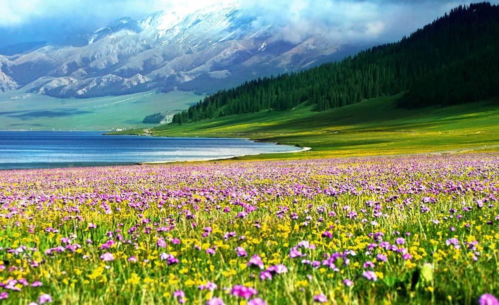新疆旅游,北疆大环线与南疆大环线,哪个更好?另一条环线更美