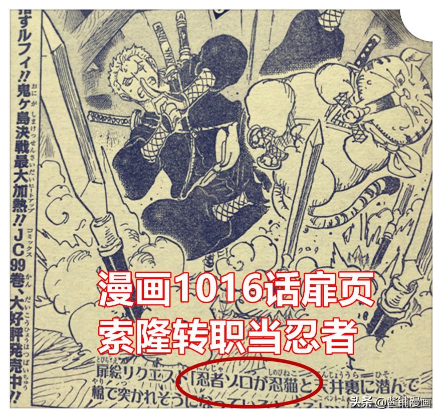 海賊王1016話,娜美D 天候棒可變為狼牙棒,索隆轉職為三刀流忍者