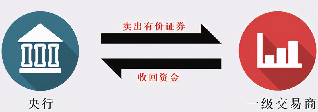 slf是什么意思(SLF和MLF的區別)