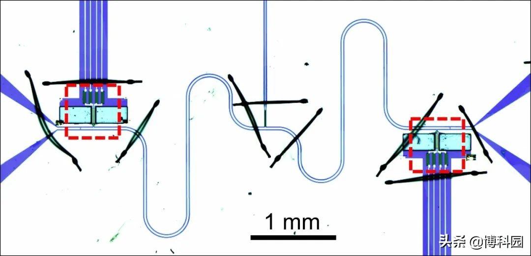 最新成果:碳纳米管振动与微波成功耦合,迈向纳米量子交换机时代