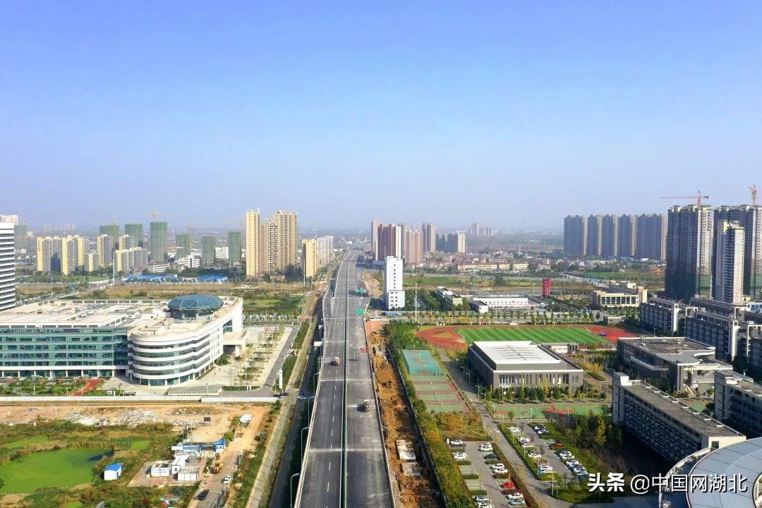 荆州市荆州区区委书记周昌俊:奋楫争先 ,绘就转型振兴新画卷