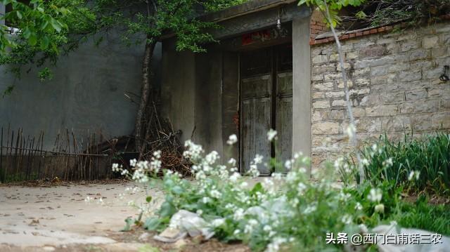 農村這四類老宅基地上的房子不能翻建,看看你家的在不在其中?