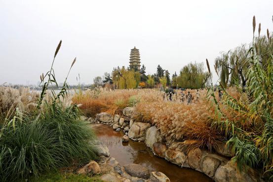 关中山水最佳处 渼陂湖再现千年秀水好风光